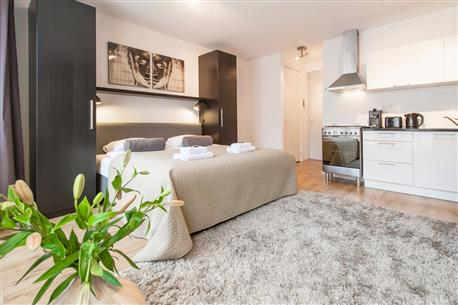 Sarphatipark Apartment 8 short stay apartment Amsterdam
